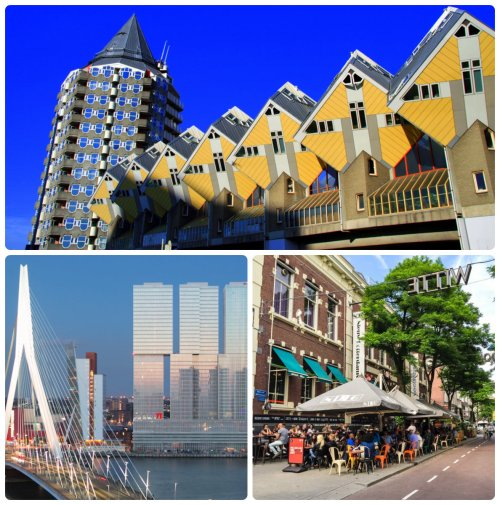 City Yoga Trip Rotterdam - Taste of Yoga