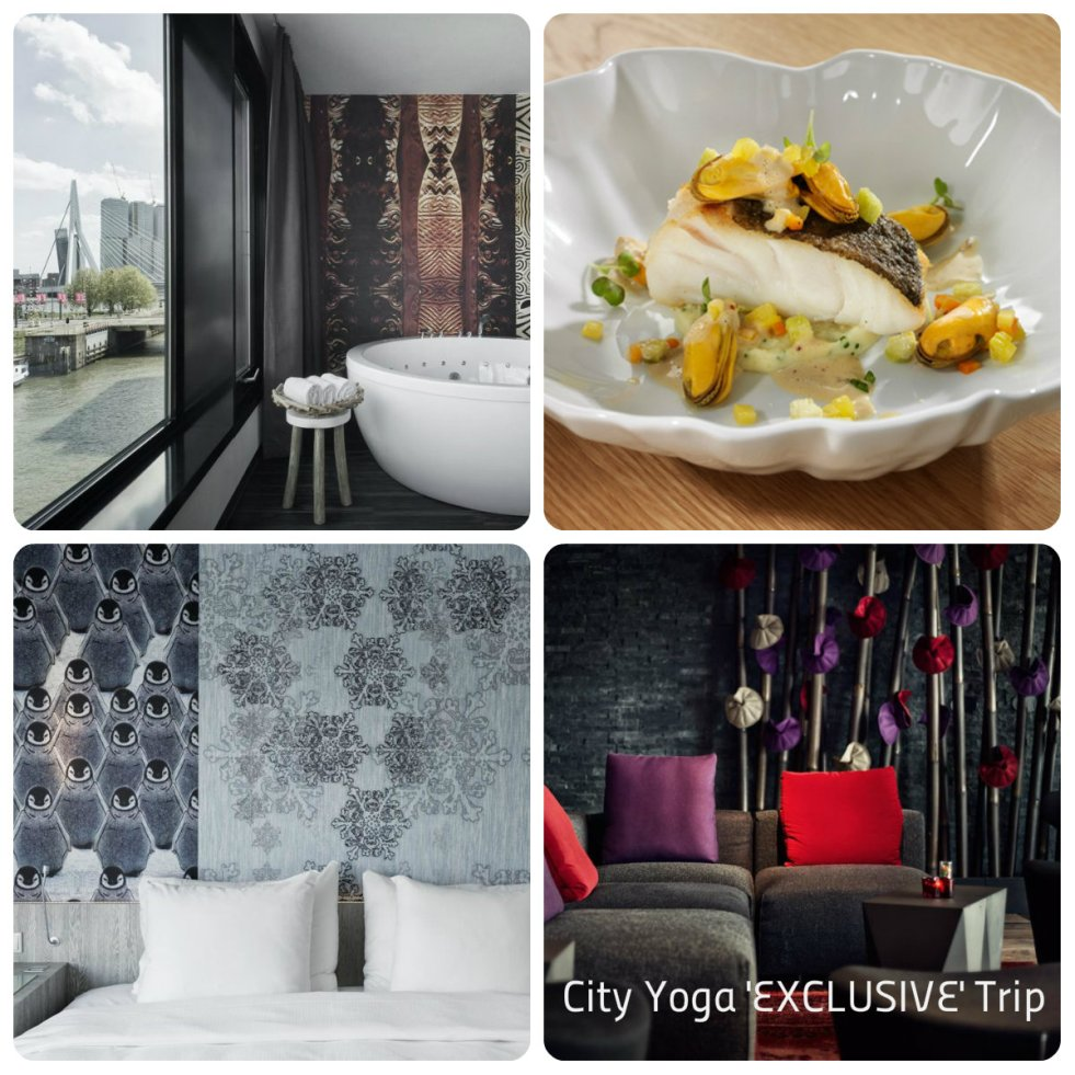 Exclusive Yoga City Trip Rotterdam - Taste of Yoga